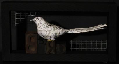 One bird, One cage, One flight